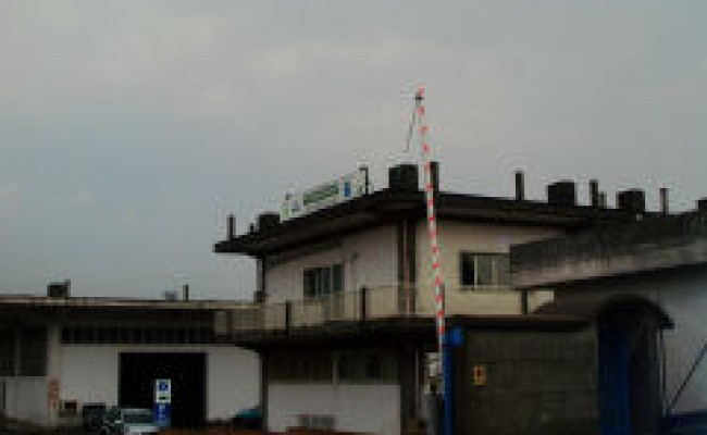 cutolo 1