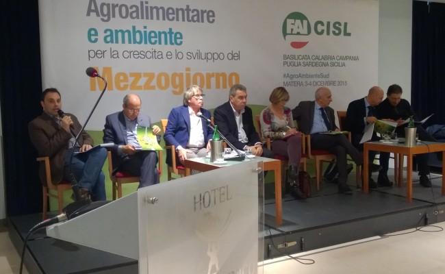 Agro_ambiente_sviluppo_3e4dic_2015 (10)