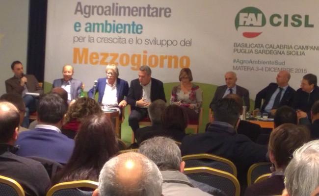 Agro_ambiente_sviluppo_3e4dic_2015 (14)