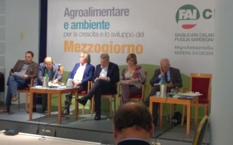 Agro_ambiente_sviluppo_3e4dic_2015 (44)