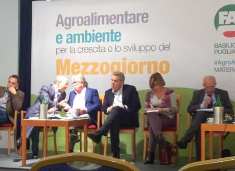 Agro_ambiente_sviluppo_3e4dic_2015 (50)