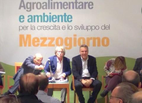 Agro_ambiente_sviluppo_3e4dic_2015 (8)